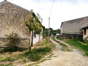 Immobili, terreno edificabile, uliveto e vigneto - San Marco Argentano