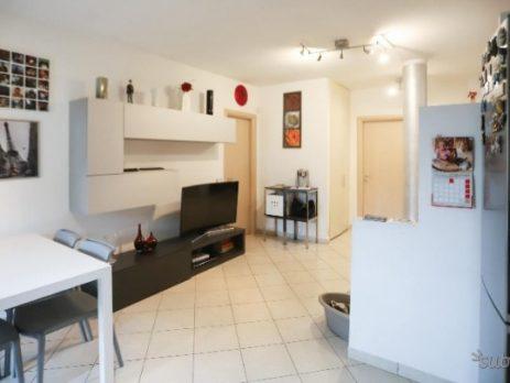 Vendo appartamento nuovo subito libero, Collesalvetti, Livorno