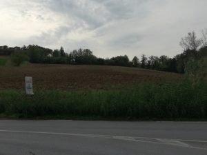 Terreno agricolo 15000 mq, Coriano, Rimini