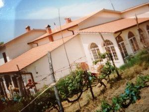 Vendo villa adibita a casa di riposo, Mentana, Roma