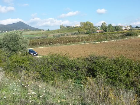 Vendesi terreno agricolo edificabile 64000 mq, Cerveteri, Roma