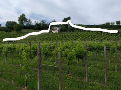Conegliano, Terreno con vigneto DOCG e annesso rustico in territorio UNESCO, Treviso