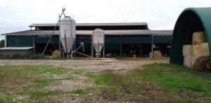 Azienda agricola completa, Coseano, Udine