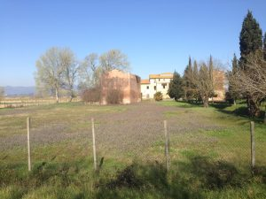 Casale ristrutturato in parte, in vendita, Montopoli in Val d'Arno, Pisa