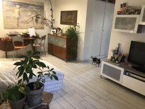 Appartamento trilocale con giardino, Cislago, Varese