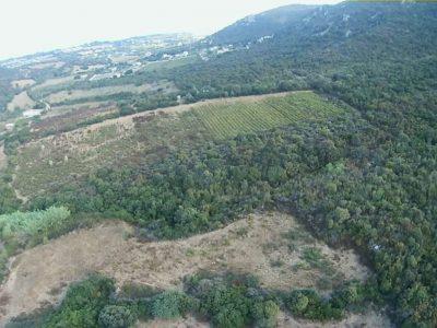 Terreno agricolo, Localita Nonei, Tertenia, Ogliastra